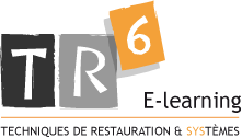 tr6_elearning
